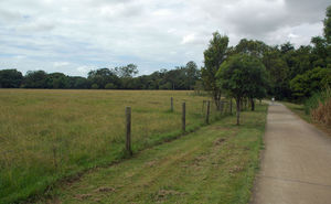 Cycling path next to rural filed in Alderley Brisbane